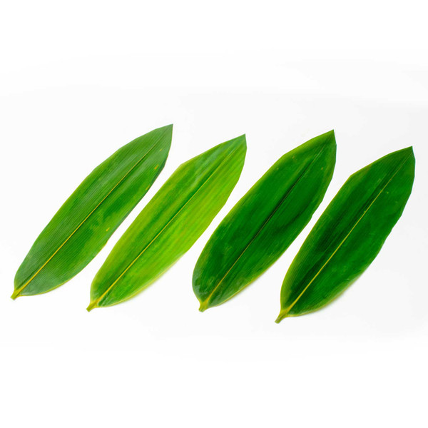 Image of Vacuum-Packed Bamboo Leaves 100 pcs 1