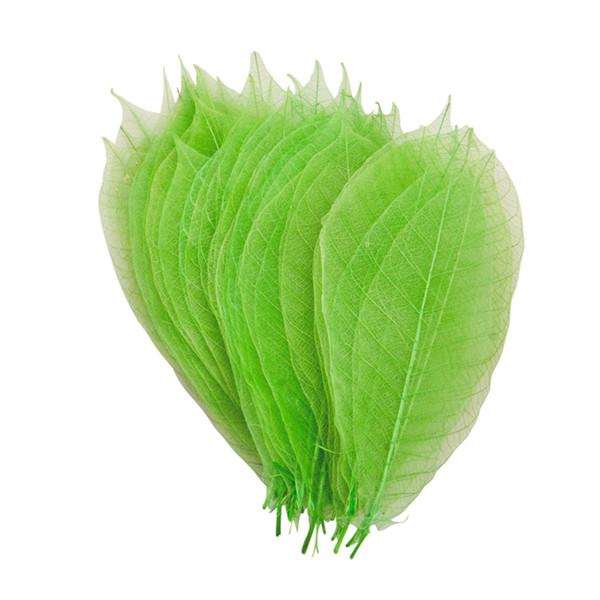 Image of Watermarked Leaf Green 13cm