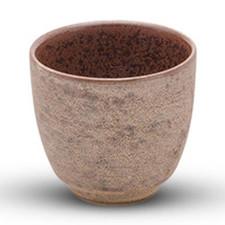 Shusetsu Gold Cup
