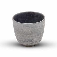 Shusetsu Silver Cup